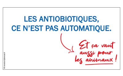 Les antibiotiques, ce n'est pas automatique… Et ça vaut aussi pour les animaux