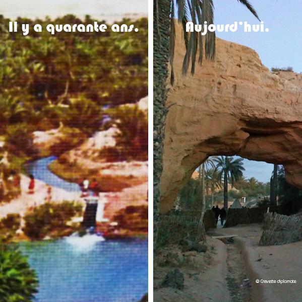 En 40 ans, l'eau a disparu dans l'oasis de Chenini à Gabès.