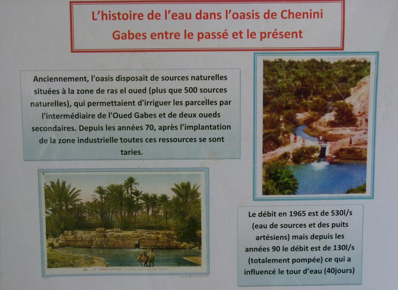 L'oasis de Chenini à Gabès a été vidée de son eau à cause de l'usine pétrochimique.