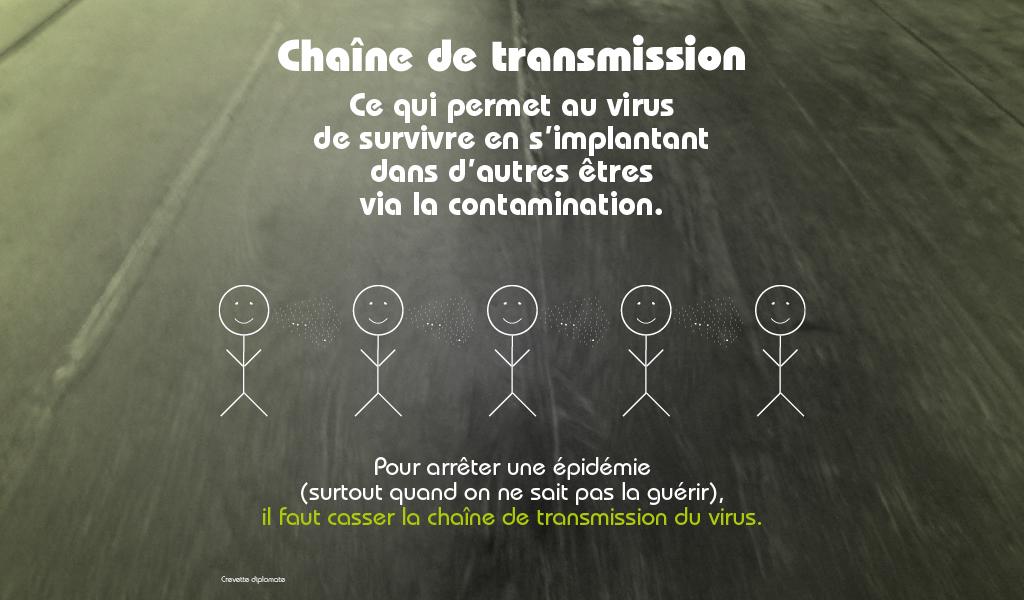 La chaîne de transmission du covid-19