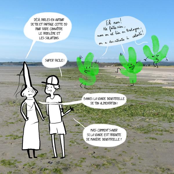 Une pétition et une bande dessinée contre les algues vertes.