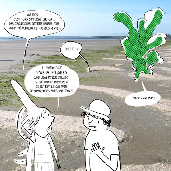 Les nitrates sont une des causes premières de la proliférations des algues vertes.